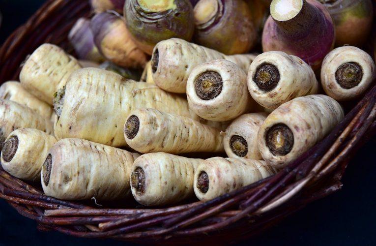 PĂSTÂRNACUL – Îmbunătățește sănătatea inimii și are proprietăți anticancer
